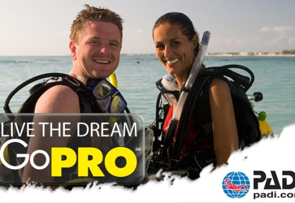 Become a Padi Divemaster (internship)