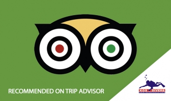 "Kos Divers recommended on ""Trip Advisor"""