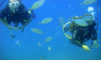 Three Ways to Increase Diver Safety